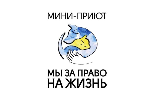 Мини-приют Мы за право на жизнь